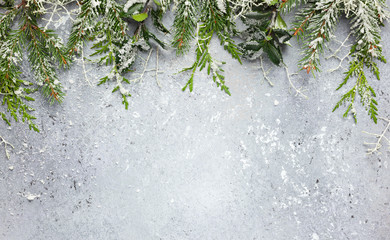Christmas or winter background with a border of green and frosted evergreen branches on a grey vintage board. Flat lay Wall mural