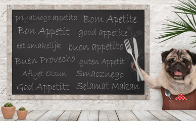Enjoy your meal - blackboard with good appetite in multiple languages with happy smiling pug puppy dog with fork and knife cutlery and leather apron at wooden counter table