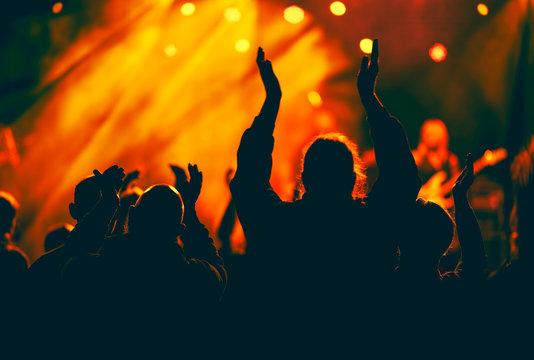 Fans enjoying festival music concert.