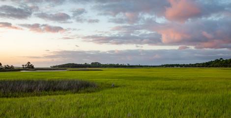Salt Marsh on the intracoastal waterway in Florida Fotomurales