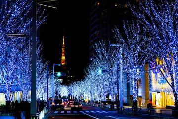 クリスマスイメージ:六本木ヒルズ前の冬の風物詩 けやき坂通りの幻想的なイルミネーションと東京タワー(公道から撮影)