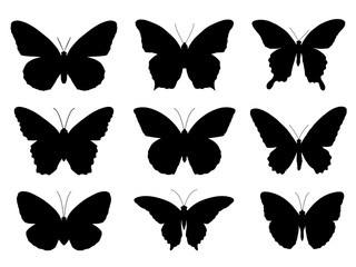 Set of silhouettes of butterflies,