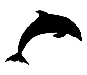 dolphin aquatic mammal icon on white background. flat style. dolphin icon for your web site design, logo, app, UI. dolphin symbol.