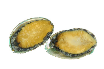Wall Mural - fresh raw abalone isolated on white background