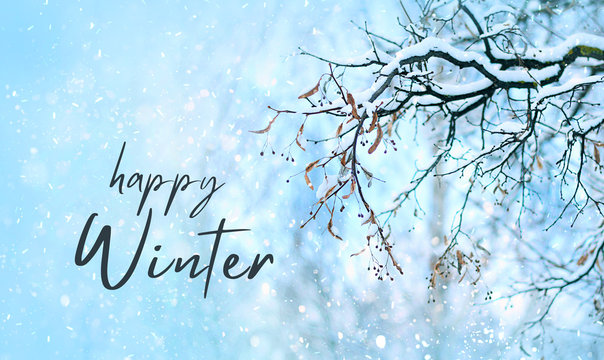 Happy winter. Tree branches in snow. snowy winter season landscape. snowy weather. soft selective focus, blurred abstract winter background