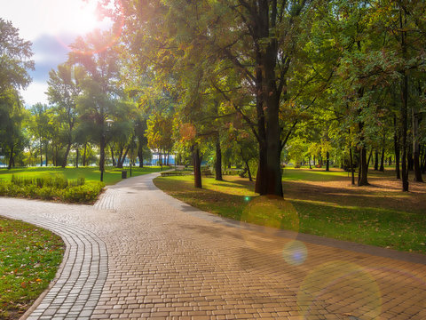 Beautiful autumn morning in the city park. Pavement walkway