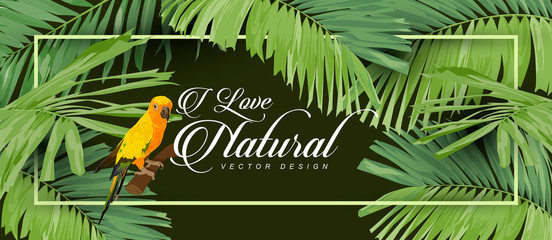 I love natural, the background with green leaves with frame.