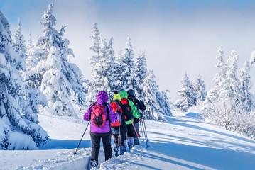 Stores à enrouleur Glisse hiver Paysage de neige et raquettes
