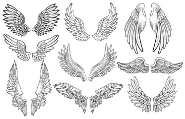 Set of angel wings. Wings collection with feathers. Black white vector illustration. Tattoo. Wall mural