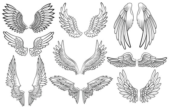 Set of angel wings. Wings collection with feathers. Black white vector illustration. Tattoo.