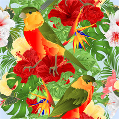 Foto op Canvas Papegaai Seamless texture tropical birds cute small funny and various hibiscus and Strelitzia reginae monstera palm watercolor style vintage vector illustration hand draw editable