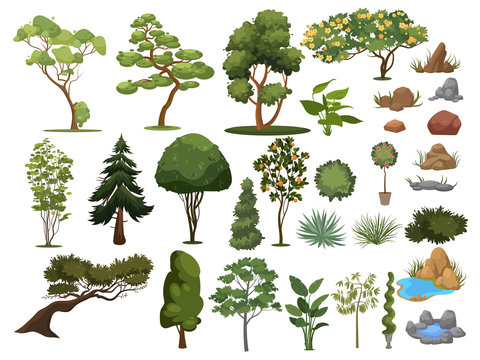 Set of trees and shrubs. Collection of landscape design elements. Vector illustration of plants. Coniferous and deciduous trees for parks.