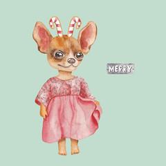 sweet chihuahua. girl dog in a beautiful pink dress. beautiful doggy girl.