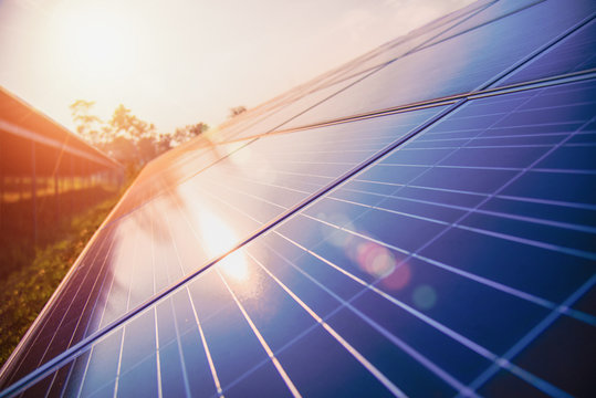 Solar panel, alternative electricity source, photovoltaic - concept of sustainable resources - Image