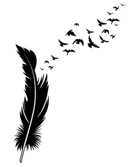 Feather and birds. Black and white vector illustration of stylized feather with silhouettes of flocks of birds. Tattoo.