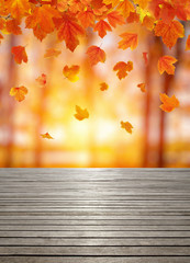 Wall Mural - Wood texture and autumn leaves