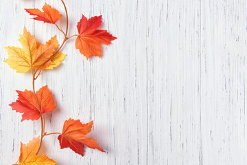 Autumn leaves over white wooden background, copy space, top view