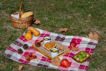 Acrylic Prints Picnic Autumn picnic in the Park with fruit, cookies and tea with apples. There's a baguette and a thermos of hot drink in the picnic basket. Autumn maple leaves, pumpkin and walnuts. Autumn vacation.