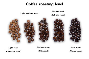 Selection of five different fresh dried roasted coffee beans arranged in a line viewed from above isolated on white background