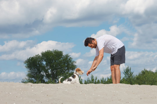 Young man is playing stick pull game with his fow terrier dog at the beach. Dog training. Dog is man's best friend.