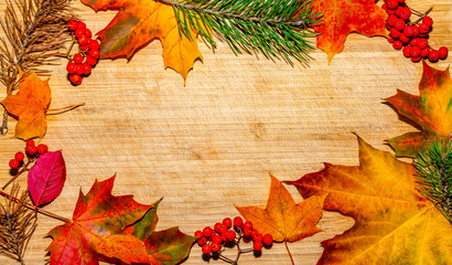 autumn background with colored leaves on wooden board