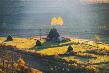 The morning beauty into the misty mountains of Transylvania