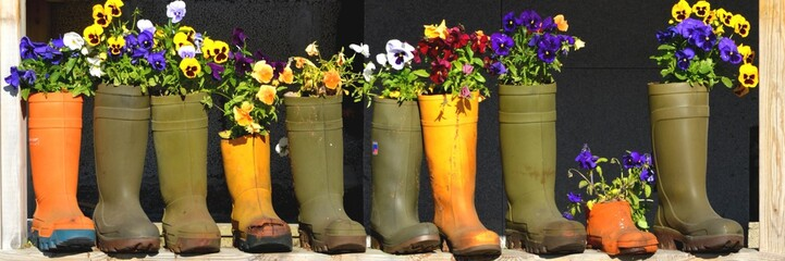 Series of Old Boots and Shoes reused as Flower Pots, 3:1