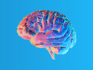 Low poly brain illustration isolated on blue BG Wall mural