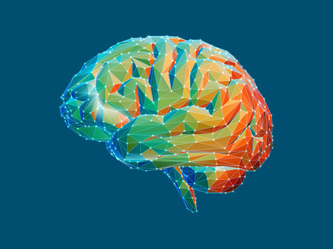 Low poly brain illustration isolated on green BG