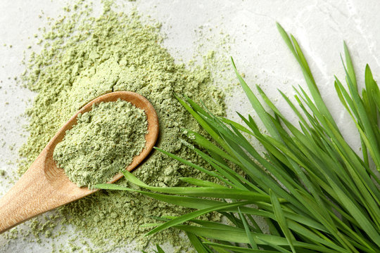 Spoon with wheat grass powder and sprouts on grey table, flat lay