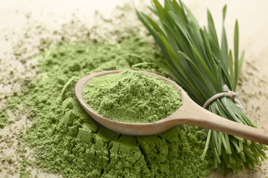 Wooden spoon with wheat grass powder and green sprouts on table