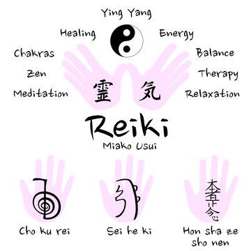 Reiki symbols vector icon set (cho ku rei, sei he ki, hon sha ze sho nen) - flat design