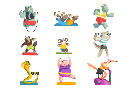 Cute animals wearing uniform doing exercises using sports equipment set, sportive animal characters, fitness and healthy lifestyle vector Illustrations on a white background