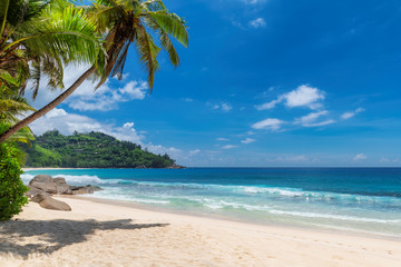 Wall Murals Beach Tropical Sunny beach and coconut palms on Seychelles. Summer vacation and tropical beach concept.