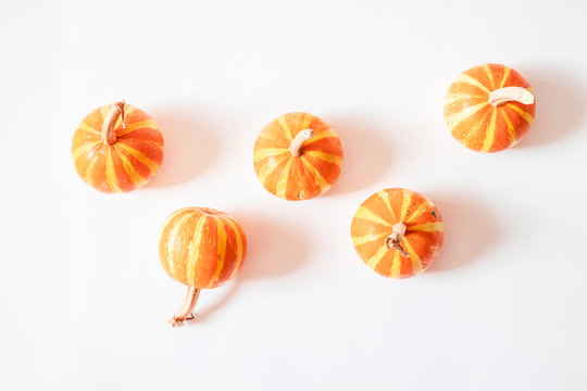 Trendy Halloween concept. Small decor of pumpkins with ponytails on a white background.