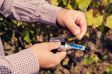 Man?s hands measure with  refractometer in a vineyard. Selective focus