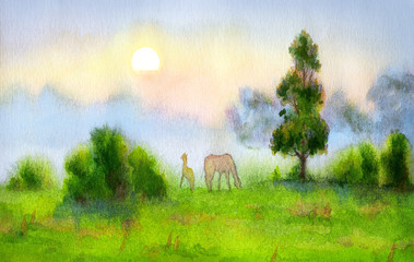 Watercolor landscape. Mare and foal graze on the field