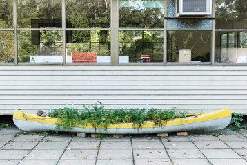 Old canoe reused as a herb garden.