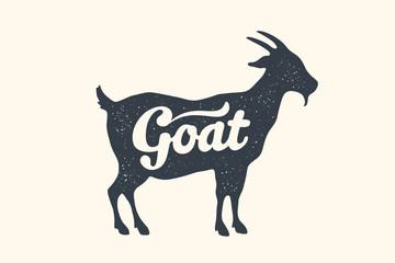 Goat, lettering. Design of farm animals - Goat