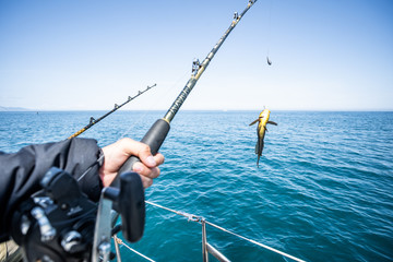 Foto auf AluDibond Fischerei Fish in the hand of an angler