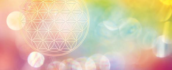 Banner Blume des Lebens in vitaler, schöpferischer Energie