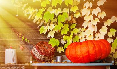 Wall Mural - Herbstzeit im Garten - Autumn in garden