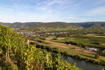 Panoramablick auf das Moseltal mit dem Weinort Mülheim im Hintergrund an einem sonnigen Herbsttag