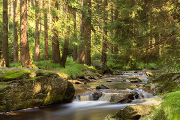 Aluminium Prints Forest river Langzeitbelichtung Gewässer im Erzgebirge an der schwarzen Pockau Fluss mit Steinen, Wald, Lichtstimmung, Naturschutzgebiet, Schwarzwassertal