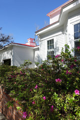Hedge of Blooming Flowers on the Side of a House in Southport, North Carolina