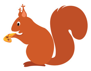Squirrel, illustration, vector on white background.