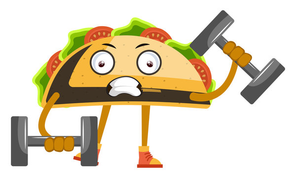 Taco with weights, illustration, vector on white background.