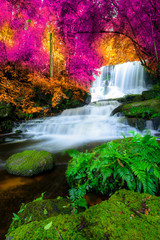 Printed roller blinds Waterfalls Amazing in nature, beautiful waterfall at colorful autumn forest in fall season