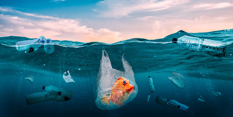 Plastics in the seas. Global Problem Wall mural
