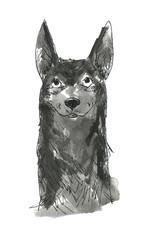 立ち耳の犬